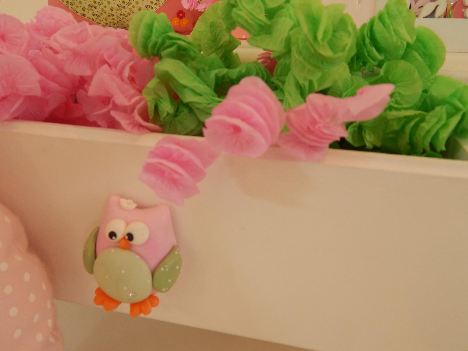FESTA CLEAN Corujinhas rosa e verde  (128)