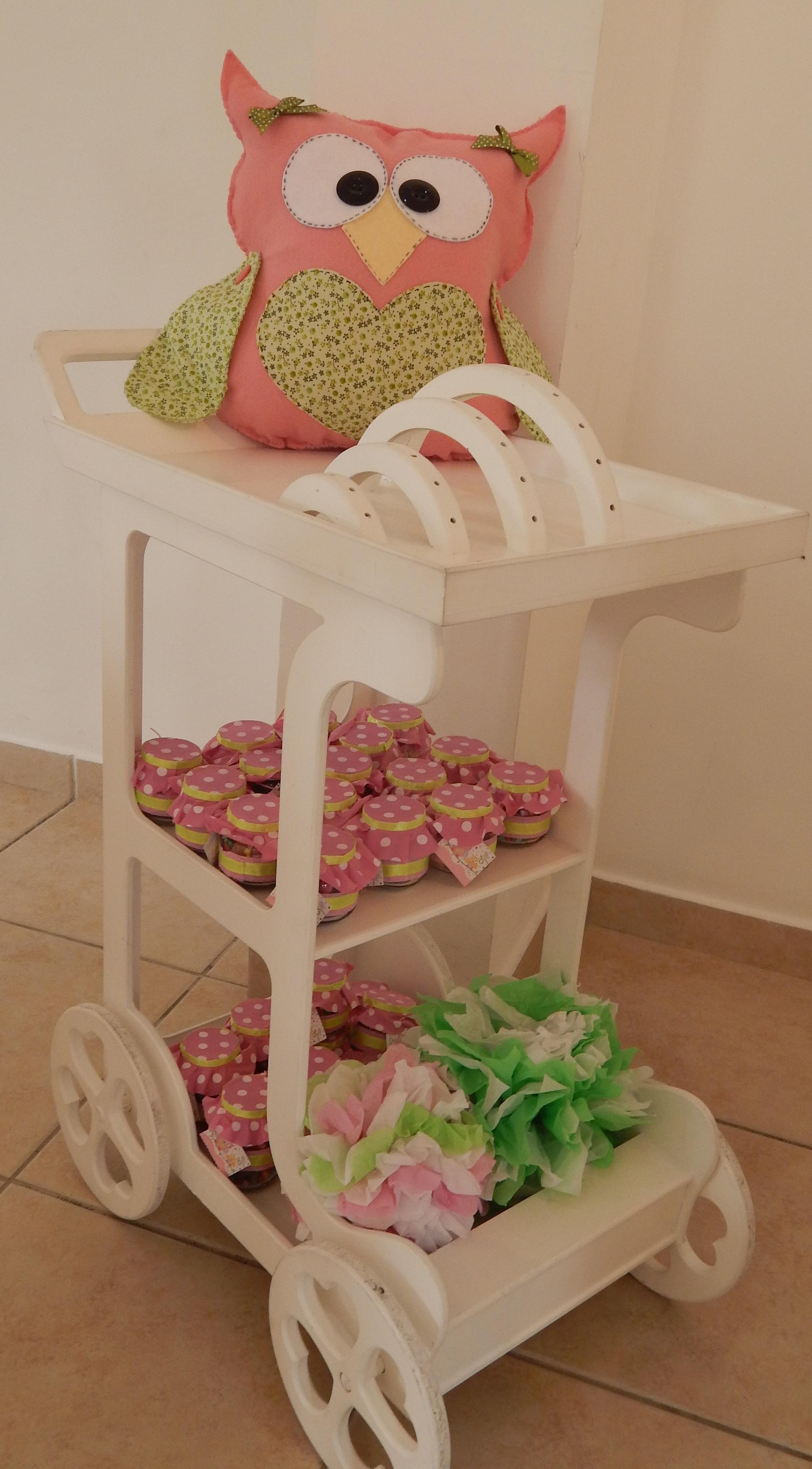 FESTA CLEAN Corujinhas rosa e verde  (141)