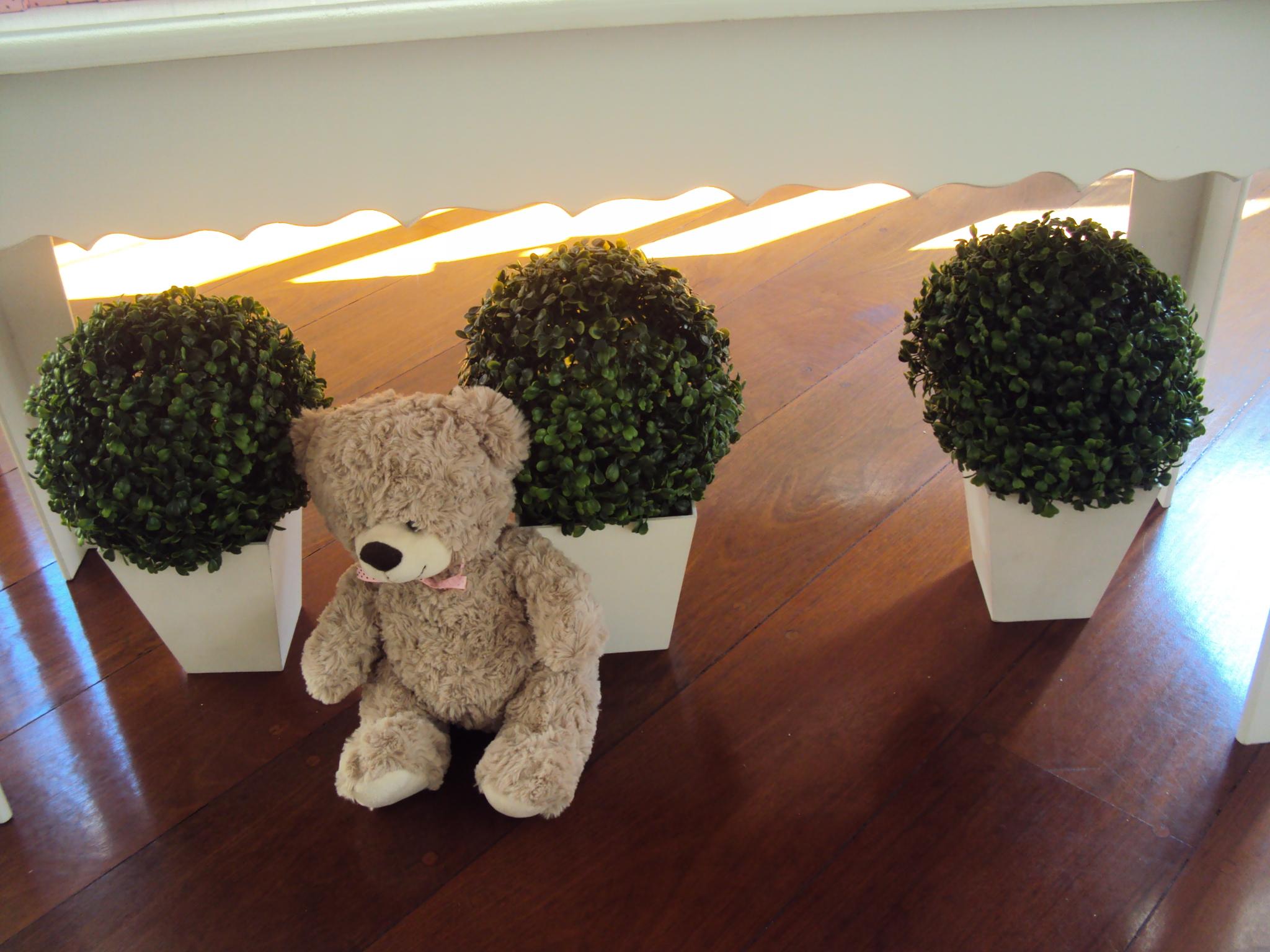 FESTA CLEAN Ursos marrom e rosa  (2)