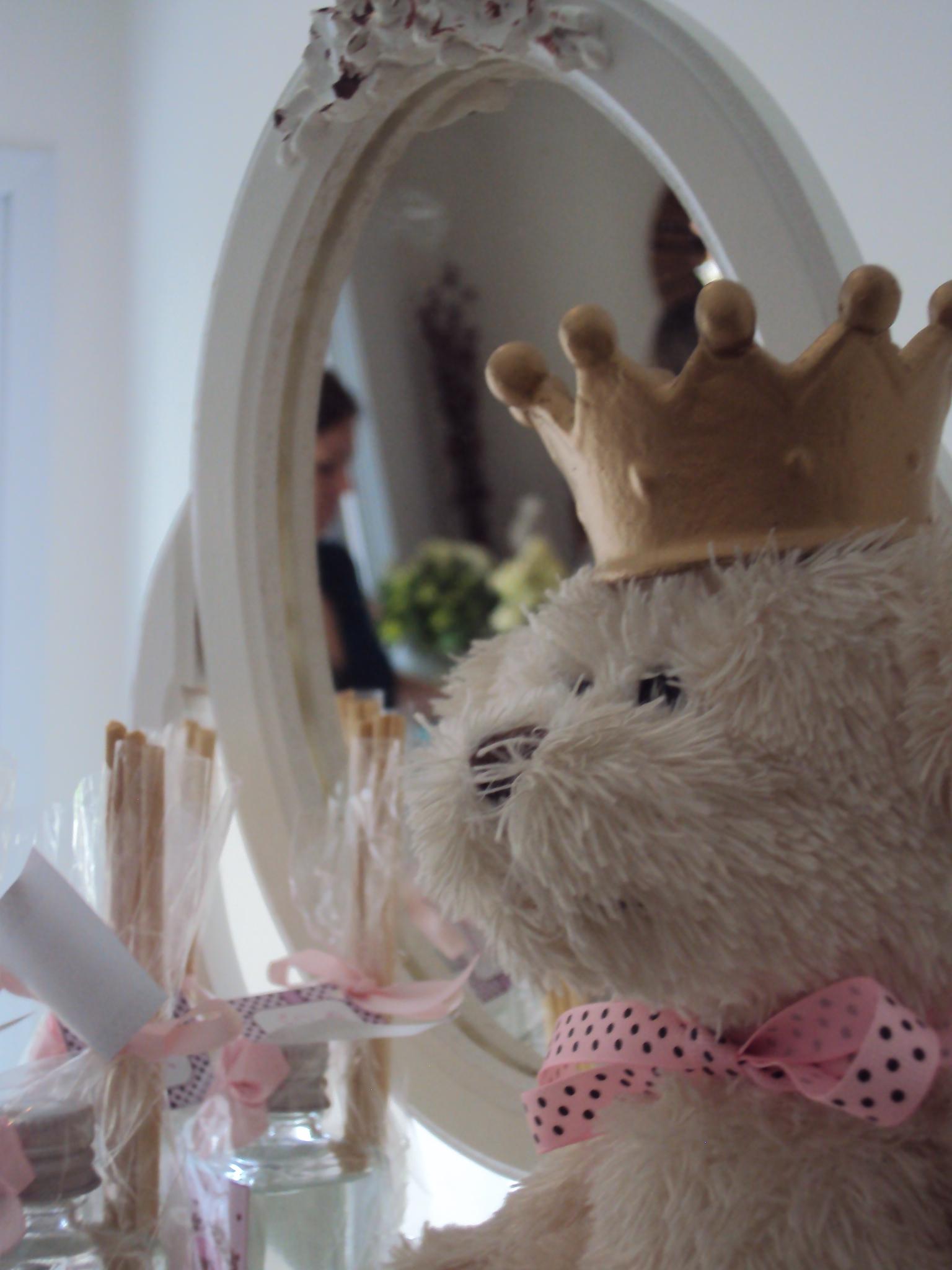 FESTA CLEAN Ursos marrom e rosa  (72)