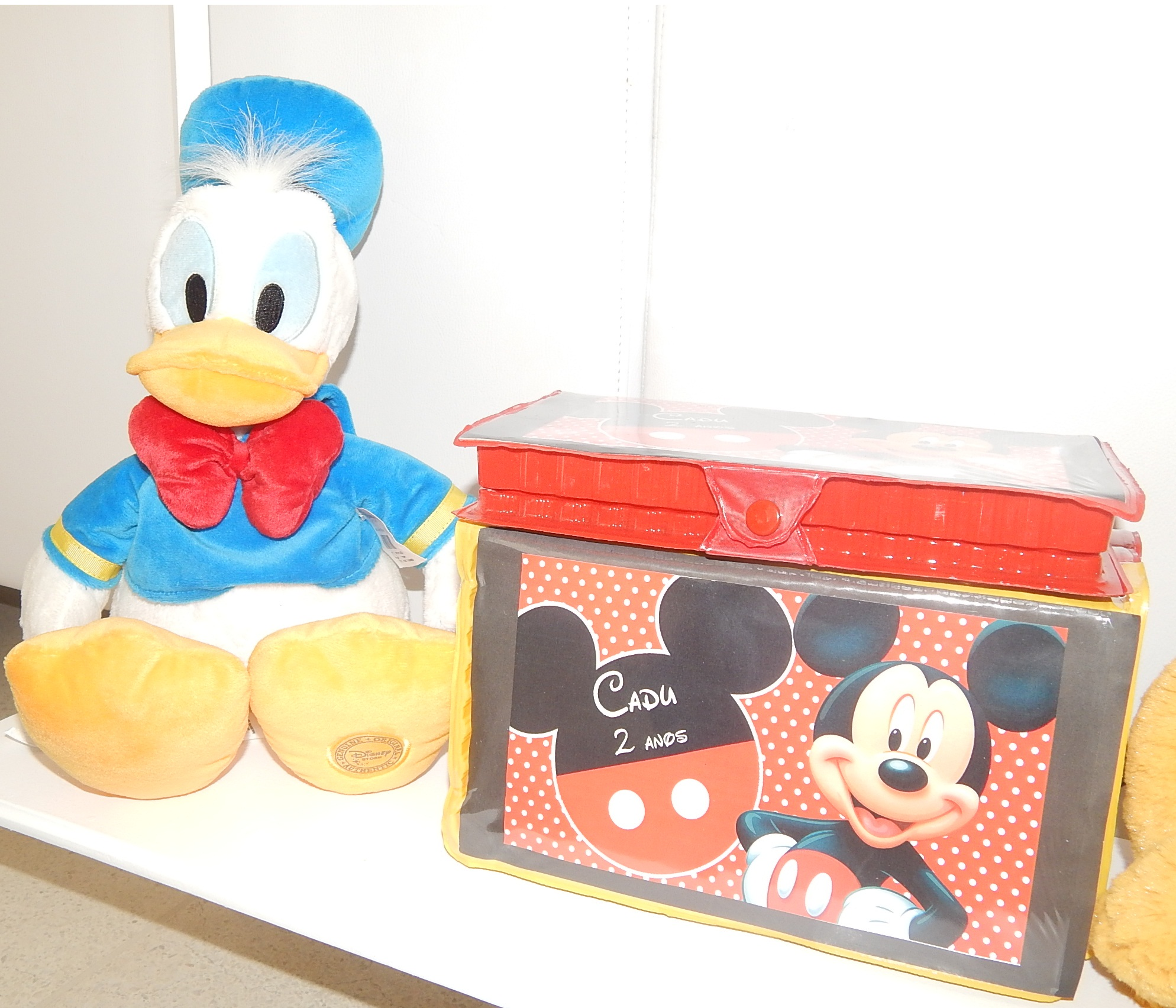 FESTA CLEAN Mickey para o Cadu  (15)
